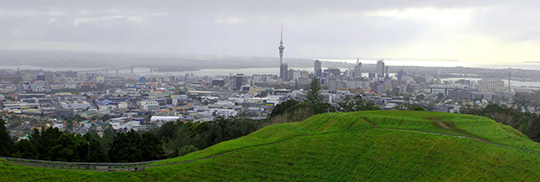 Growing Ak greener Mt Eden view