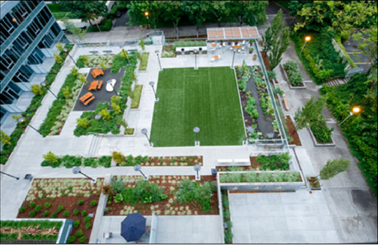Am example of communal open space within a large residential development (Portland, Oregon)