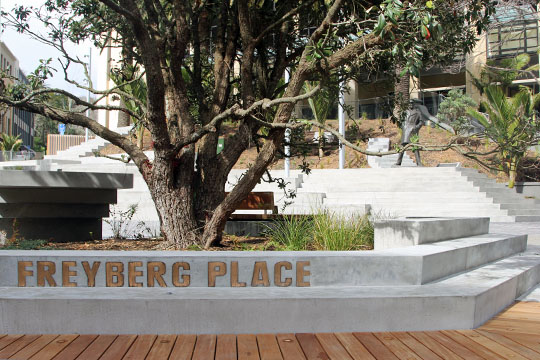 Freyberg Place 3